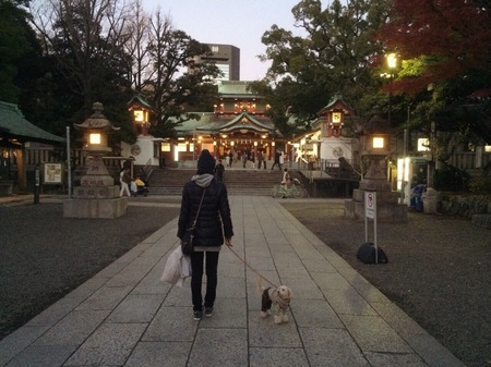 夕暮れ神社