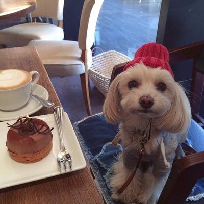 カフェでニット帽
