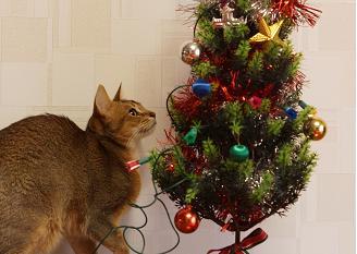 無題christmas
