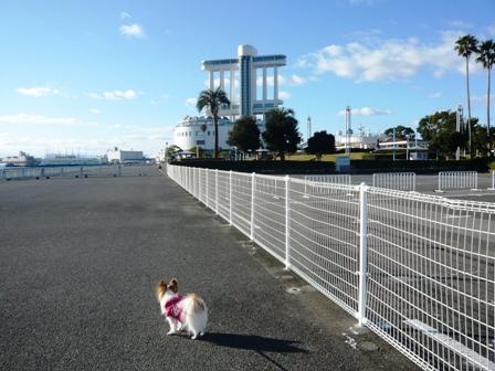 名古屋港ガーデン埠頭2