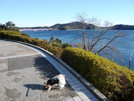 東名浜名湖PA1