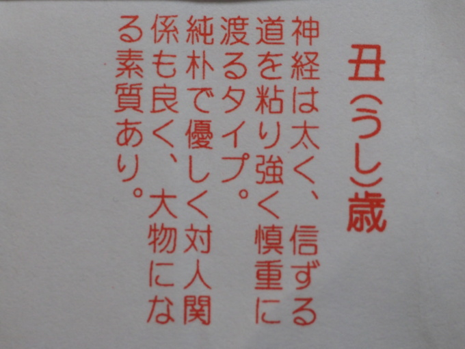 blogP1012758.jpg