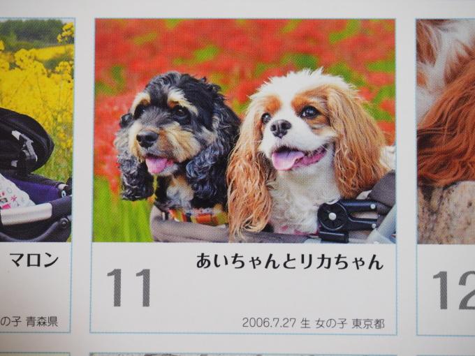 blogPC062058.jpg