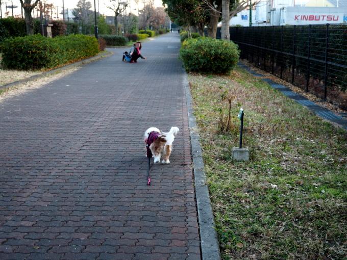 blog_P1163319.jpg