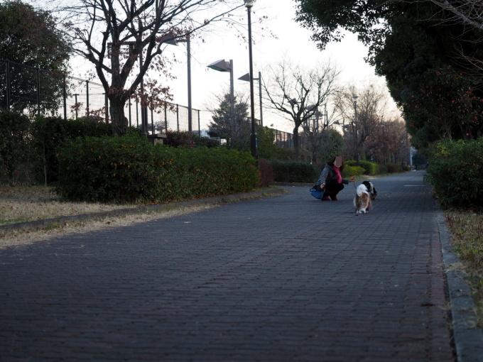 blog_P1163321.jpg