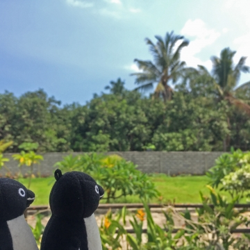 20151225-20151231-Bali (193)-加工