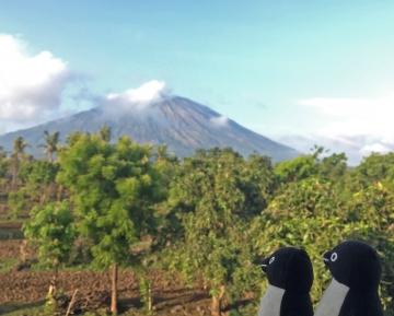 20151225-20151231-Bali (182)-加工