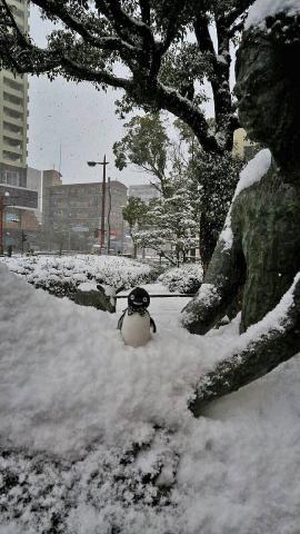 20160125-ぴょんみさんより-加工