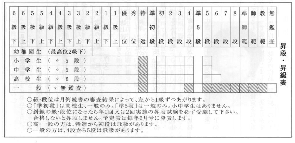 ペン時代級位体系