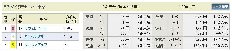 【払戻金】280207東京5(競馬 3連単 万馬券)
