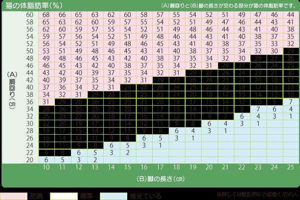 check-win02_img_02.png