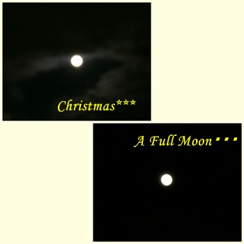 Christmas Full Moon