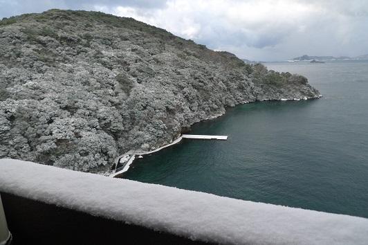 20160129雪景色