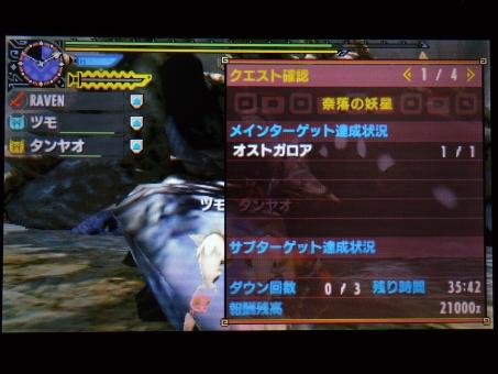 DSC00968_R.jpg