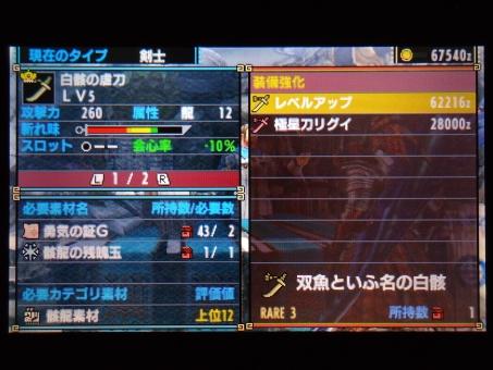DSC00971_R.jpg