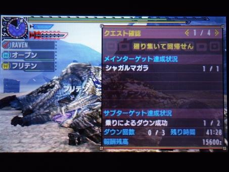DSC01003_R.jpg