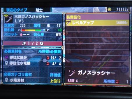 DSC01008_R.jpg
