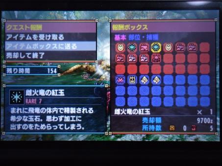 DSC01010_R.jpg