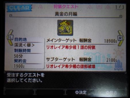DSC01011_R.jpg
