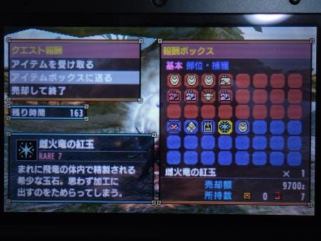 DSC01012_R.jpg
