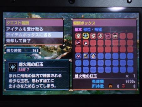 DSC01015_R.jpg