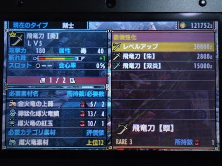 DSC01018_R.jpg