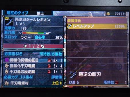 DSC01020_R.jpg