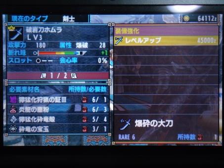 DSC01026_R.jpg
