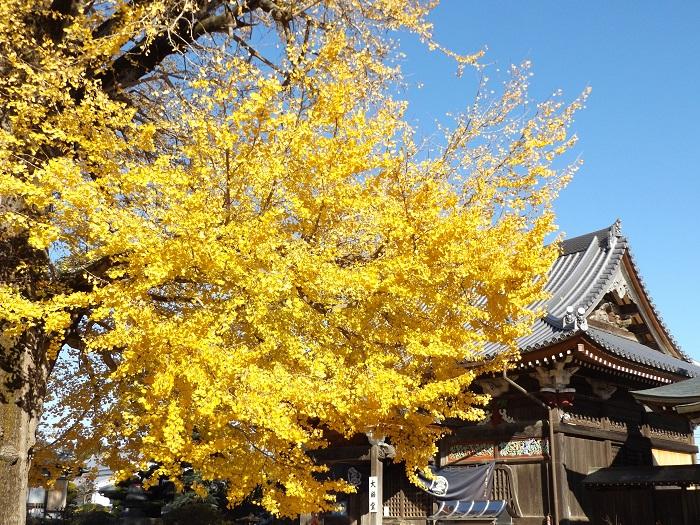 地蔵寺 2