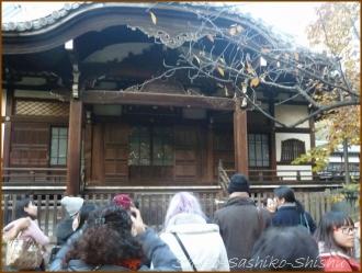 20151226 法明寺  1  鬼子母神さんぽ