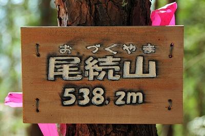 DSC_8439_20151226215007797.jpg