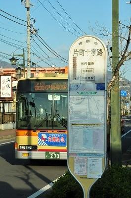 DSC_8694.jpg