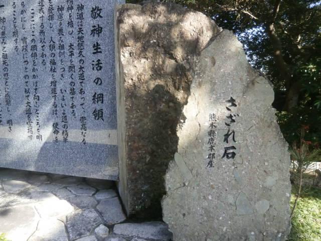 P1310062.jpg