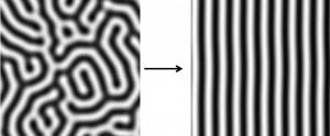 Turing stripes