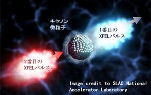 XFEL Xenon cluster