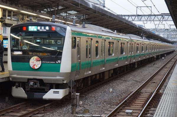2016-01-23 埼京線E233系ハエ103編成 各駅停車新木場行き2