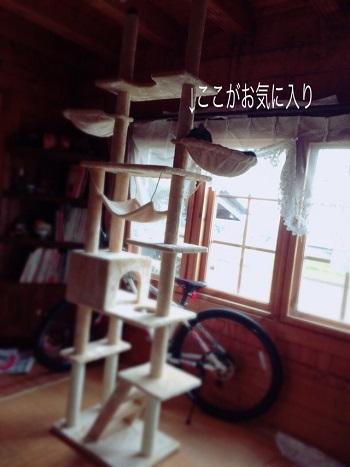 ふたば12 attachment01