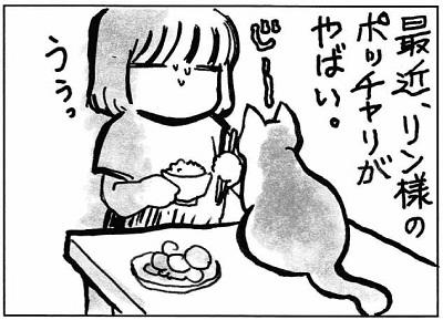 ぽっちゃリン2-1