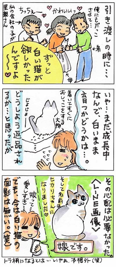 幸せ掴んだコテちゃん2-2