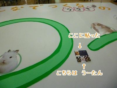 P1220231-1.jpg