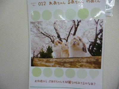 P1220249.jpg