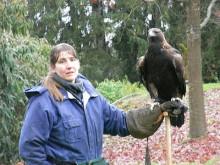 仙珠-巨大な鷲