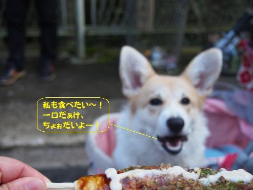 私も食べたい
