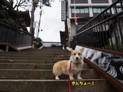 有馬の階段1