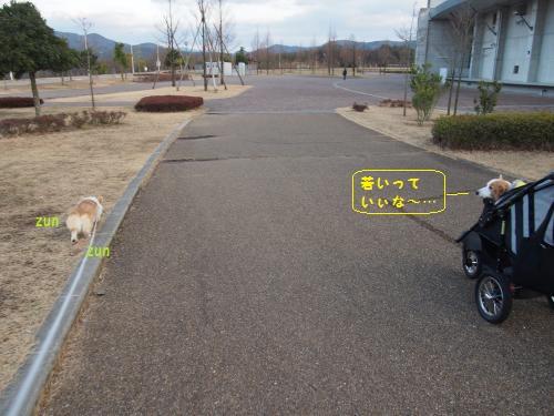 防災公園お散歩