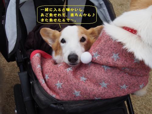 ちゃこちゃんカート3