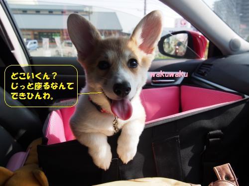 行きの車ん中