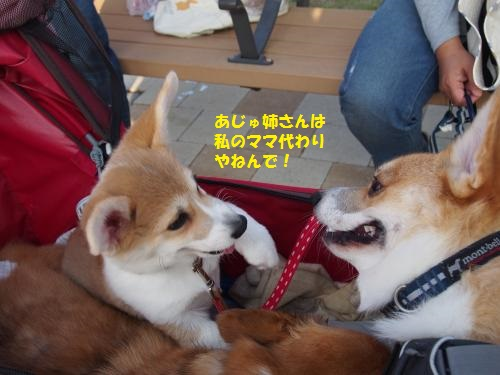 福ちゃんと会話