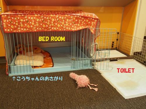 芹ちゃんのベッド
