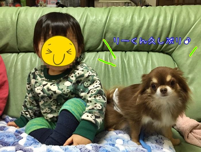 image1_201601032040469be.jpg